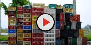 Assista: Vigilância Sanitária interdita Supermercado Gentil em Goiânia