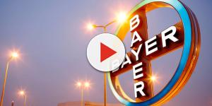 Vagas na empresa Bayer: multinacional alemã está contratando