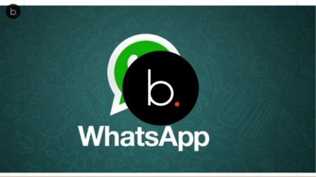Video: WhatsApp, arrivano le spunte verdi per gli account verificati