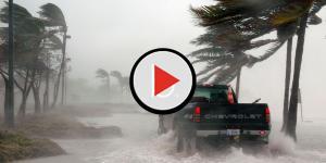 Assista: Ator da Globo espera de furacão e toma medidas drásticas