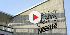 Nestlé tem neste momento mais de 1.000 vagas abertas