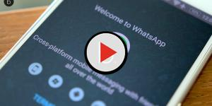 video: WhatsApp introduce gli stati e il PIP