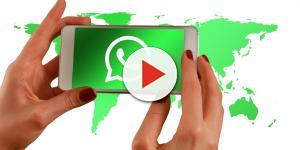 VIDEO: WhatsApp , si potrà cancellare un messaggio inviato prima della lettura