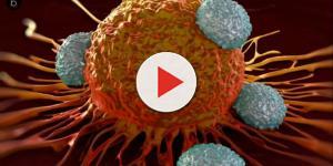 VIDEO: In aumento i casi di cancro, ma il 40% potrebbe essere evitato