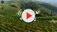 Video: Le tre rose di Eva 4, ecco tutte le novità: torna Anna Safroncik