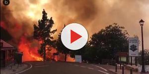 Un incendio en Canarias calcina más de 2.000 hectáreas de bosque