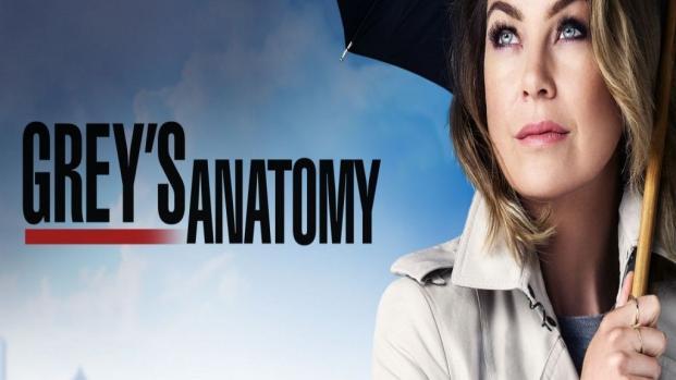 Grey's Anatomy: uma descoberta chocante acontecerá na 14ª temporada