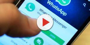 WhatsApp e WhatsAgent: tutte le novità in arrivo