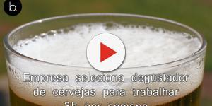 Empresa seleciona degustador de cervejas para trabalhar 3h por semana