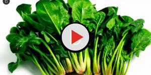video: Spinaci Banduelle ritirati dal mercato. Sospetto avvelenamento