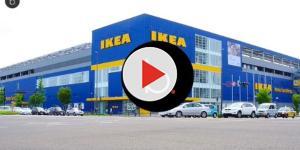 Il laboratorio SPACE10 di Ikea renderà la produzione alimentare più intelligente