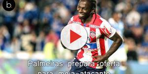Palmeiras prepara oferta para meia-atacante