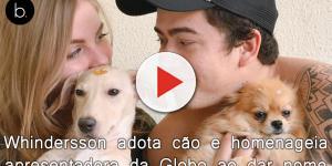 Whindersson adota cão resgatado e homenageia apresentadora da Globo ao dar nome