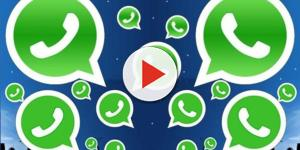 Cancellare in modo definitivo un messaggio da whatsapp