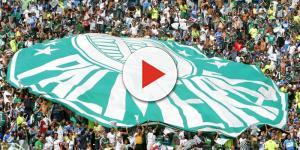 Para defender o Palmeiras destaque do Bayern de Munique se oferece
