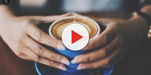 Es hora de cambiar el café tradicional por el de achicoria