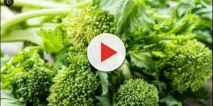 VIDEO: Cime di rapa Gusto del Salento contaminate da botulino