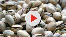 Il miglior pistacchio d'Italia viene prodotto nelle terre assolate di Agrigento