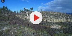 Las llamas y el fuego arrasan Galicia