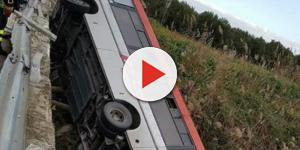 VIDEO: Calabria, autobus esce fuori strada: l'autista muore