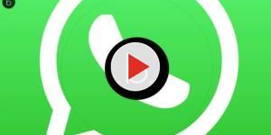 Il tuo partner chatta di notte su WhatsApp? Ecco come scoprirlo