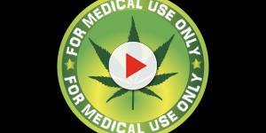 Cannabis: all'esame il nuovo disegno di legge