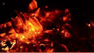 Incendios: Indignación en Galicia por la gestión de la crisis