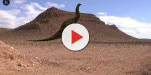 Las minas aportan hallazgos valiosos a la paleontología
