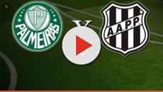 Como assistir Palmeiras x Ponte Preta com transmissão do jogo ao vivo