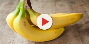 La dieta delle banane spopola negli Stati Uniti