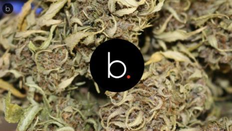 La Camera ha approvato l'uso medico della cannabis