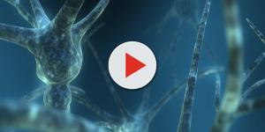 Disturbo ossessivo compulsivo: l'origine è nell'anomala variazione dei geni