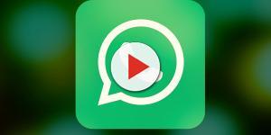 WhatsApp, ecco la novità sulla posizione gps del dispositivo