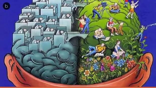 La memoria no está ubicada en una sola parte del cerebro