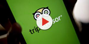 TripAdvisor apologizes to user who posted about sexual assault at Mexican resort