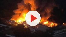 Vídeo: Abaladas, Marquezine e Marina falam sobre incêndio grave na Globo