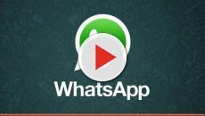 WhatsApp : Voici la nouvelle fonction va vous sauver la vie !