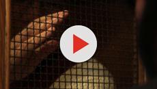Don Guidotti alla presunta vittima di stupro: 'Sono c....i tuoi'