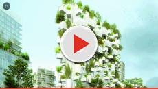 Vídeo: Un bosque en un rascacielos en París