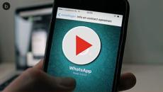 Video: WhatsApp, una novità in esclusiva per gli utenti Apple