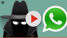 Saiba como ler uma mensagem que foi apagada no WhatsApp