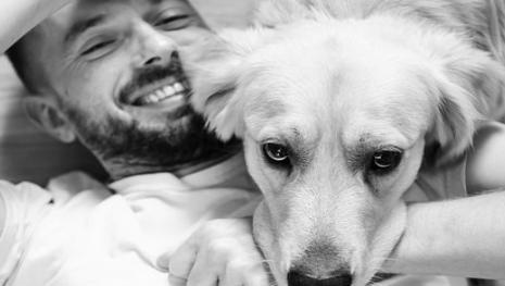 Cadela morre de 'coração partido' ao ser abandonada em aeroporto