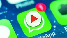 WhatsApp: cambio di rotta e novità in arrivo