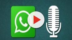 WhatsApp: come salvare le note vocali?