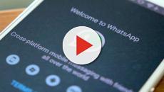 Video: Whatsapp, in arrivo importanti novità per la gestione dei gruppi