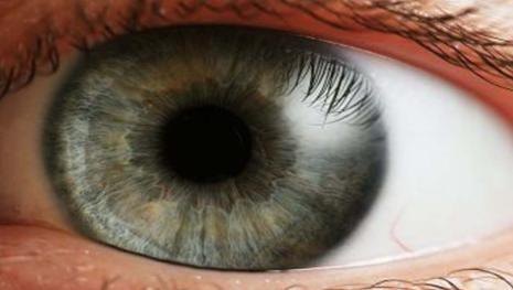 Testimoni oculari: la memoria è attendibile?
