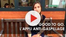 Too Good To Go : L'application écolo qui te permet de manger à petit prix