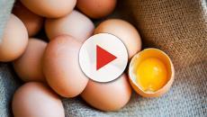 Poche uova nei supermercati: da cosa dipende?