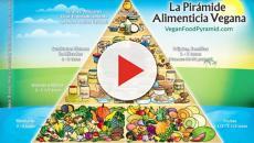 La alimentación vegana es absolutamente sana