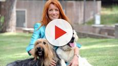 Movimento Animalista Michela Brambilla: scissione a sinistra e stroncatura Lega